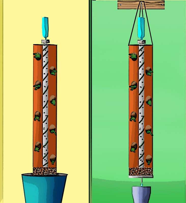 Huerta vertical con botellas de plastico tecnologia for Imagenes del huerto vertical